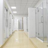 L'effet d'argent de pièce jointe de portes coulissantes vue la porte de douche de 1400~1500 millimètres