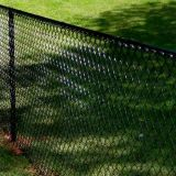 Painel revestido da cerca da ligação Chain de engranzamento de fio da segurança do PVC