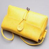 La vente chaude met en sac Madame élégante Handbags de mode neuve de modèle