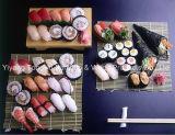 Ferramentas do sushi, fabricante do sushi, esteira plástica do rolamento do sushi
