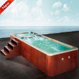 Het hete KUUROORD van het Zwembad van het Systeem van Balboa van de Verkoop Openlucht (SR820)