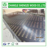 Quality Premium 17mm Popular Logo Formwork/Concrete Plywood