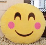 2016 Recentste Heet Verkopend Hoofdkussen Emoji