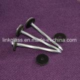 De gemeenschappelijke Geassembleerde Gegalvaniseerde Spijker van het Dakwerk van de Paraplu van het Staal voor de Bouw van het Dak (STRNC02)
