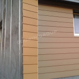 Paneling стены декоративного плакирования стены Анти--UV дешевый (TF-04E)