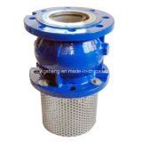 Задерживающий клапан чугуна DIN Pn16 молчком
