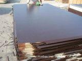 Contraplacado de cobertura de poplar de 18 milímetros com filme preto / marrom para construções