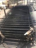 Barriera di sicurezza elegante residenziale rivestita del ferro saldato della polvere con il germoglio