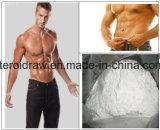 Gmp-aufbauendes Steroid Hormon-Testosteron Enanthate CAS Nr.: 315-37-7