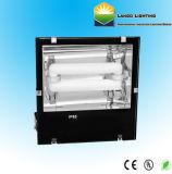 L'énergie efficacement la lumière crue de la lampe d'induction de l'éclairage (LG0525S)