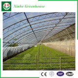 農業の単層のポリエチレンフィルムの温室