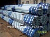 preço de fábrica de alta qualidade recomendar médios quente de rosca de tubo galvanizado com tampas de azul