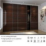 Armoire de rangement en acrylique classique en acrylique en bois (FY2354)