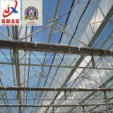 Венло Тип стекла выбросов парниковых газов для выращивания овощей и цветов растущих