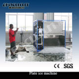 15la tonne pour les fruits de mer de glace de la plaque de la machine de traitement
