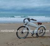500W/750W, 48V 학교 바닷가 함 Bakfiet 또는 전기 자전거 또는 단속기 전기 자전거 또는 Retro E 자전거 또는 포도 수확 E 자전거 또는 고전적인 Pedelec 의 W 두 배 정면 충격 En15194 의 세륨