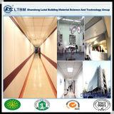 새로운 건물 내화성 재료 칼슘 규산염 제조자