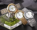 Marca Belbi Reloj de dama moda casual palabra romana de la superficie de Shell impermeable reloj de cuarzo.