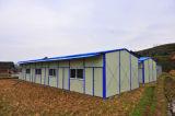 Camera prefabbricata della Camera del contenitore del pannello a sandwich di Xgz/gruppo di lavoro Villadom (XGZ-243) d'acciaio struttura