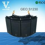 Geo S1230 sceglie 12 '' PRO riga professionale altoparlante di schiera
