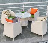 Silla al aire libre de la rota del PE de los muebles del jardín de mimbre del patio