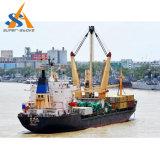 Multi nave da carico del contenitore di scopo del TUE