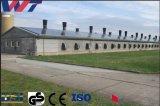 Grado Superior Estructura de acero de soldadura de prefabricados de aves de corral Pollo con un bajo coste
