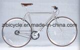 고아한 고품질 Chromely Fixie 기어 자전거