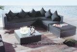 As medulas luxuoso mobiliário de exterior, Jardim Sofá, Piscina sofá (TG-1279)