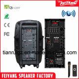 Feiyang/Temeisheng/ Gran potencia de Audio Profesional Sistema de PA altavoz Bluetooth--F23