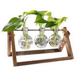 装飾的なガラス地球または明確なプランターまたはホーム装飾