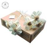 De met de hand gemaakte Bloem van Sola van de Bloem van de Decoratie van de Verspreider van het Riet van het Aroma van de Orchidee 6PCS/Box Houten