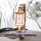 Projetar o relógio de senhoras luxuoso da liga do relógio (WY-040E)