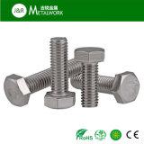 Boulon Hex DIN933 de plein amorçage de l'acier inoxydable SS304 de M4 M5