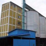 80tムギの製粉機械小麦粉の生産ライン製粉機