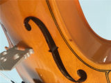 Hot Sale entrée Grade violon de contreplaqué de couleur rouge