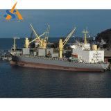 Multi imbarcazione di carico del contenitore di scopo PMP (produzione massimale possibile) della Cina