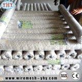 Le PVC a enduit la maille de stuc utilisée pour la frontière de sécurité de jardin