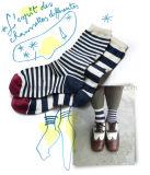 シマウマ縞の方法通りの異様な子供の服のソックス