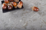 Искусственний поставщик Kitchcountertop камня кварца