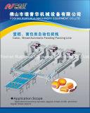 Automatisches Verpackungsmaschine-/Verpackungsfließband (führend und in Zeile 3 packend)