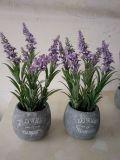 Flores artificiales de la lavanda Gu916215258