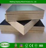 Reutilizable 12mm/14mm/16mm/18mm película de alta calidad enfrentan el contrachapado para la construcción