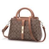 Piccola borsa della spalla di modo del sacchetto di Tote dell'imbracatura del sacchetto delle signore Crossbody