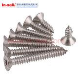 Винт M12 собственной личности DIN7504-P Drilling