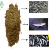 Qualité d'alimentation des animaux de poudre de protéine de farine de poisson