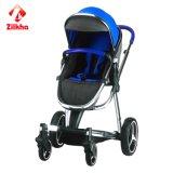 Stilvoller, beweglicher Baby-Spaziergänger - ein beständiges und sicheres Multifunktions