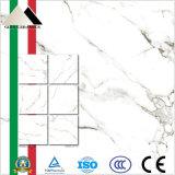 El azulejo más caliente de la pared del mármol del azulejo de suelo 600*600 con la superficie nana (X6PT884T)