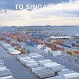 広州からのシンガポールへのWanhaiライン競争の出荷の貨物