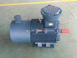 Yb3 시리즈 내염성 삼상 비동시성 모터